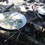 Cooking on the open fire